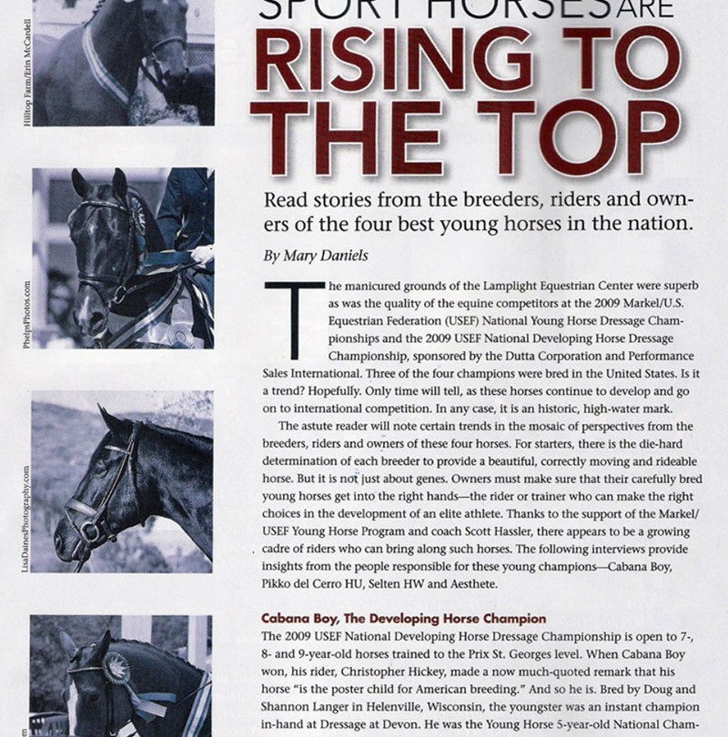 American-Bred Sport Horses Are Rising To The Top