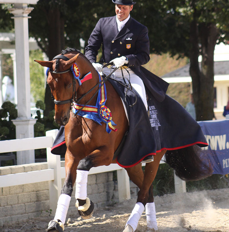 National Developing Horse Dressage Championship