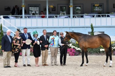 news_hilltop-breeder-awards-1