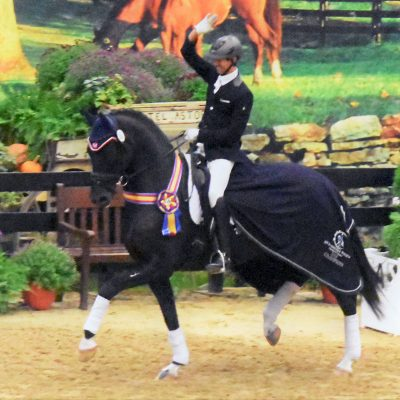 news_us-dressage-finals