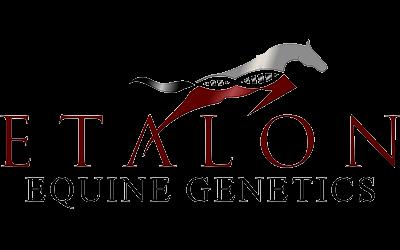 etalon_logo_web