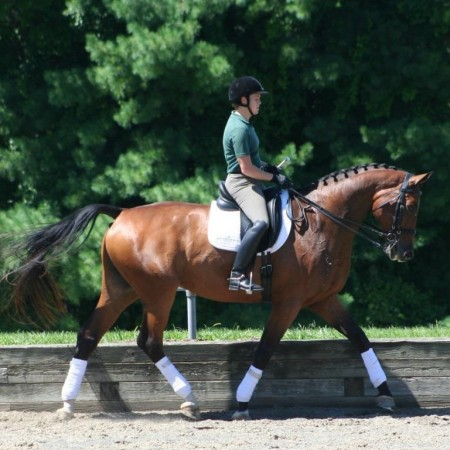 Con_Chancellor_GrossRoma_Myers_collected trot