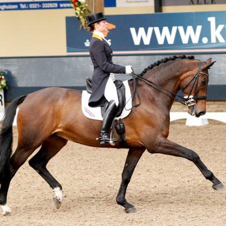 Adelinde Cornelissen - Ulissa KNHS Indoorkampioenschappen 2012 © DigiShots